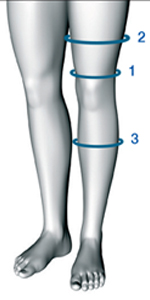 Measurements of the leg circumference